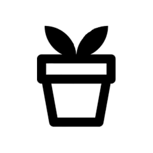 Широкий вибір декоративних рослин.